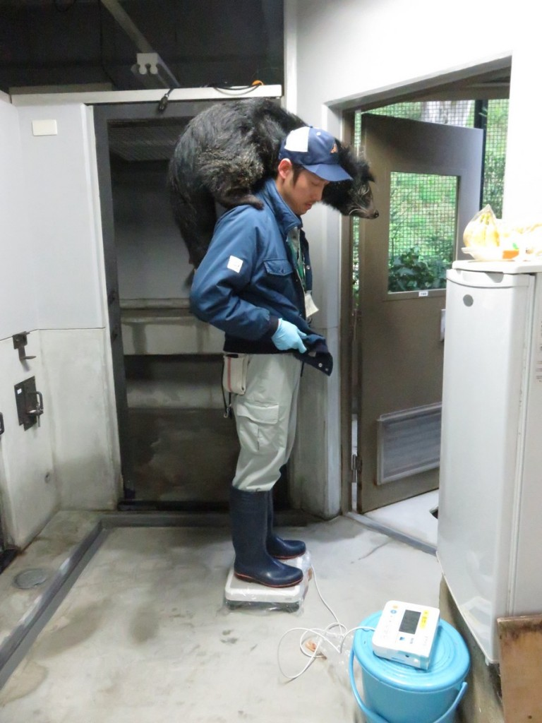 fukuokashi_160413 1070