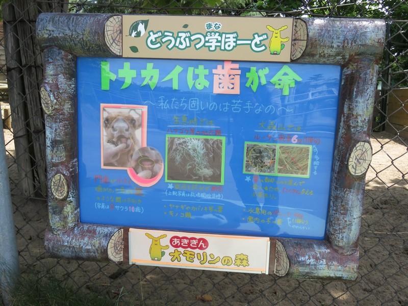 omoriyama_160725 104