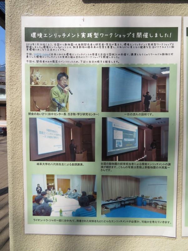 kyotoshi_170328 009