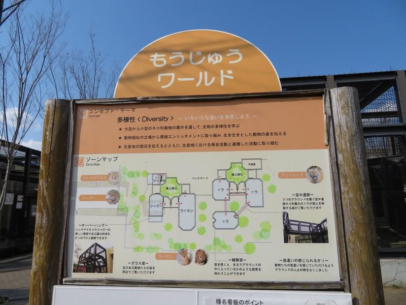 kyotoshi_170328 1602
