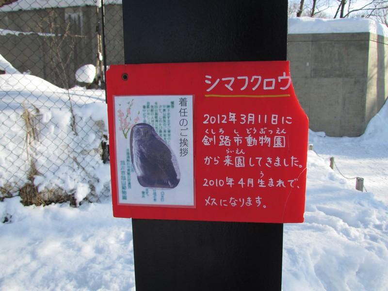 asahiyama130122 323