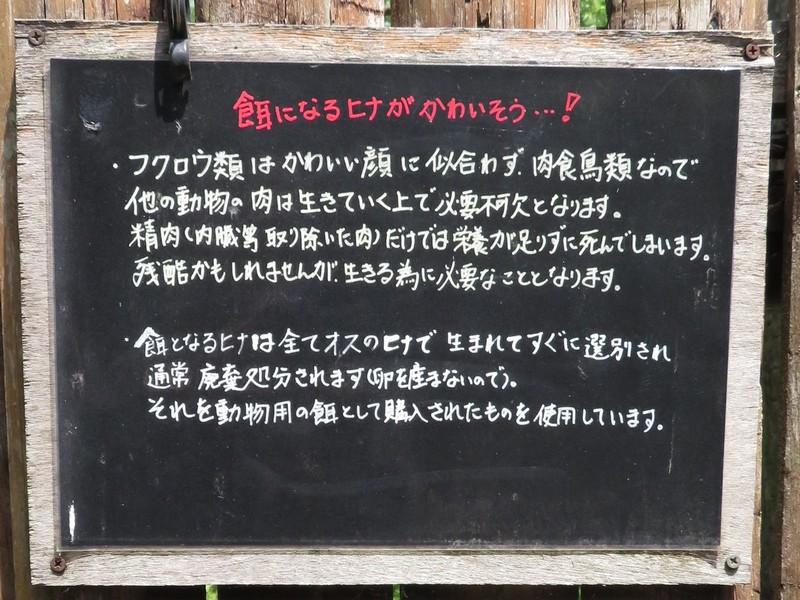 kushiro_170620 254p