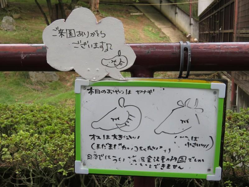 moriokashi_170815 344