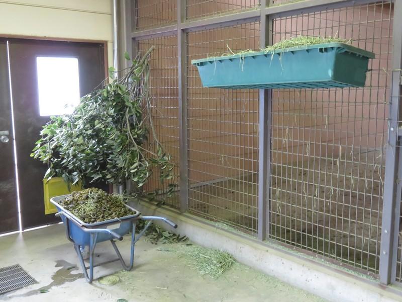 fukuyamashi_180126 (398)