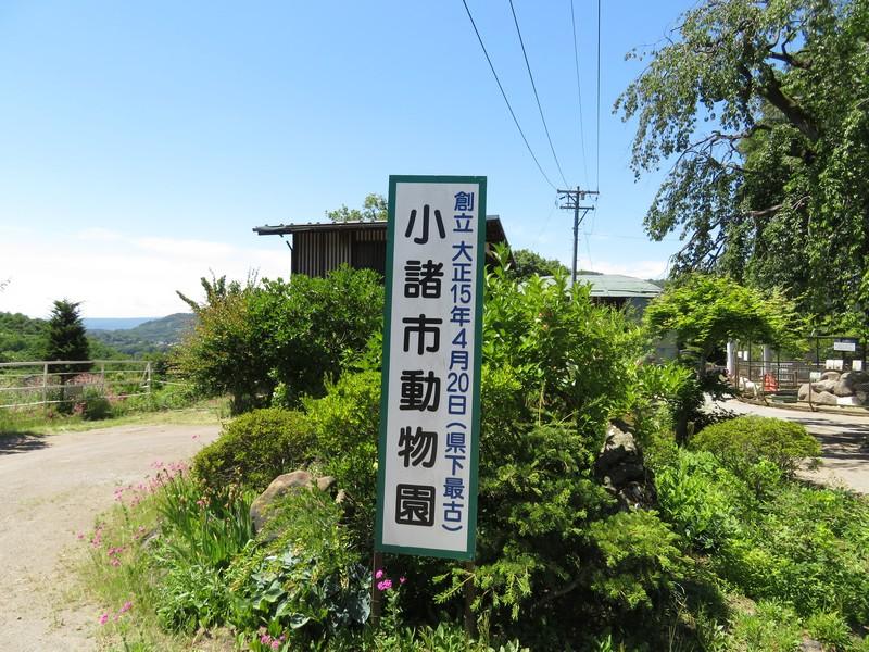 komoroshi_180614 (202)