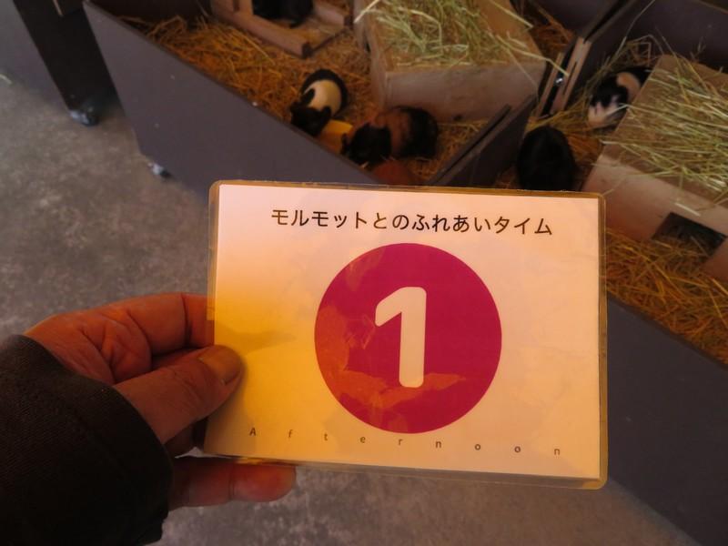 omutashi_180711 (405)