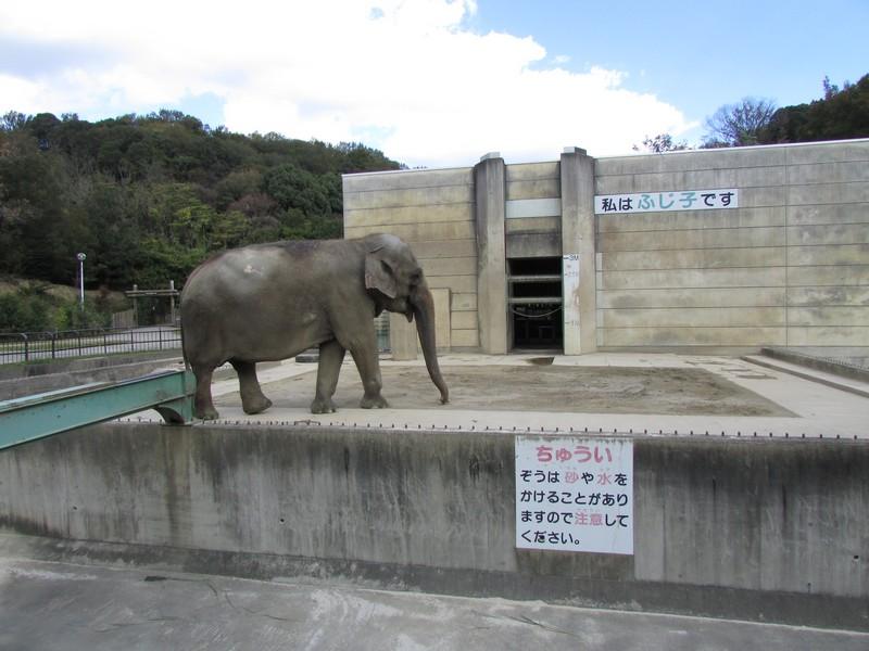 okazakihigashi_141113 084