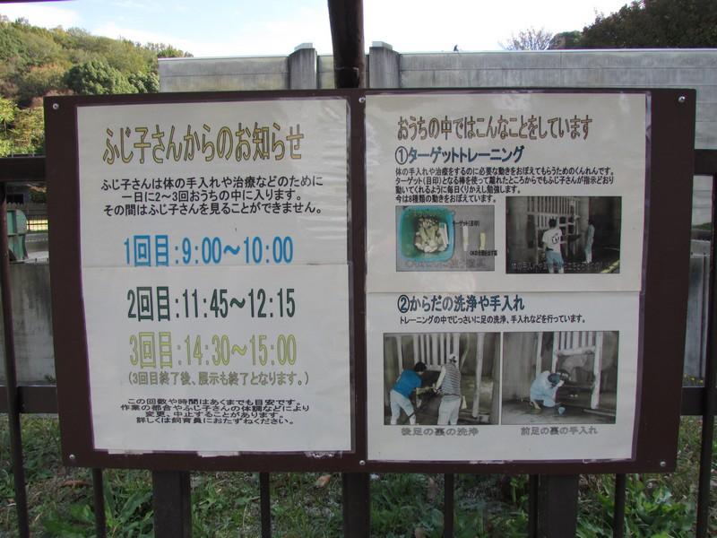 okazakihigashi_141114 184
