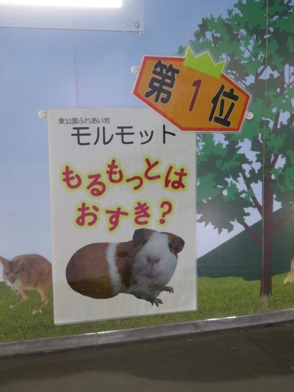 okazakishi_higashi_180905 (747)