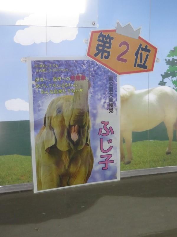 okazakishi_higashi_180905 (748)