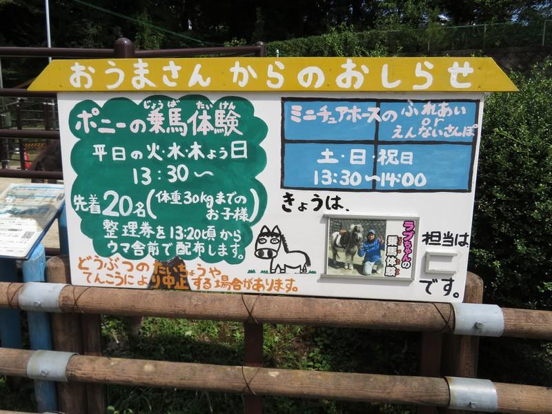 okazakishi_higashi_180905 (774)