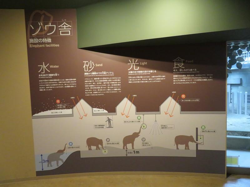 maruyama_190912 (133)