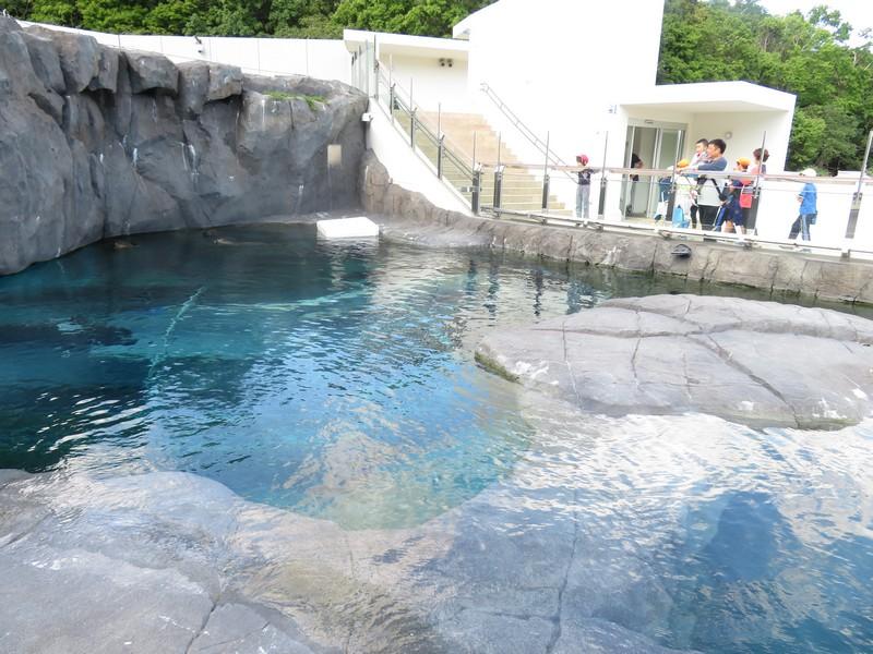 maruyama_190913 (436)r