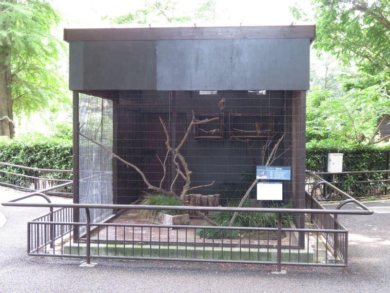 inokashira_200609 (1026)