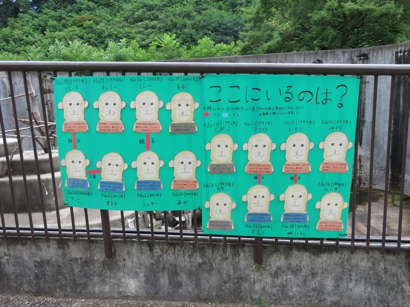 okazakishi_higashi_200624 (165)
