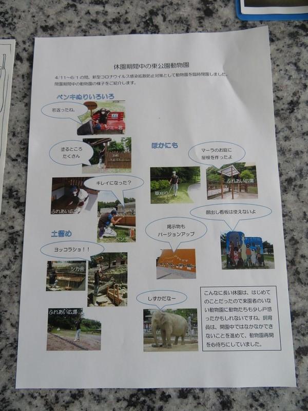 okazakishi_higashi_200624 (266)