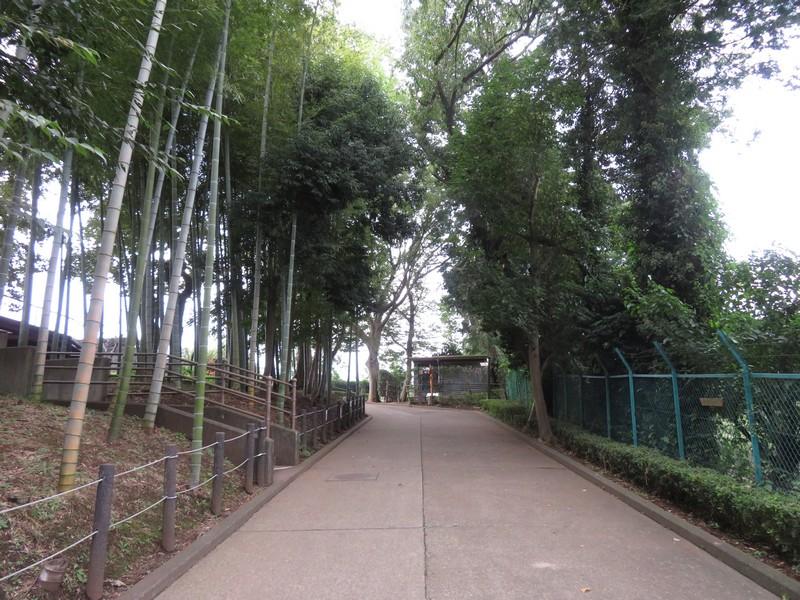 ichikawashi_201022 (397)