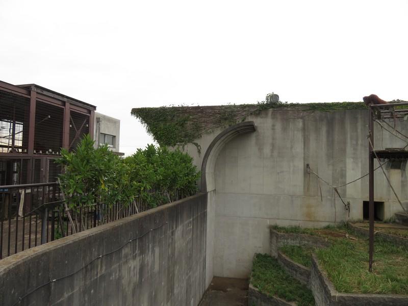 ichikawashi_201022 (989)
